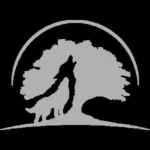 Worthiness academy logo